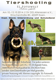 Flyer Fotoshooting Altenessen