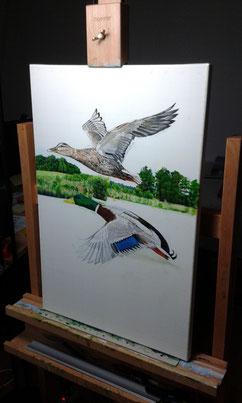 In Arbeit: Enten über dem Bommerweiher