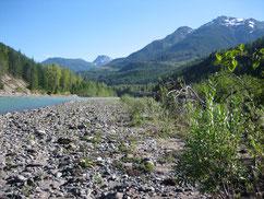 Sommer Steelhead am Copper River BC