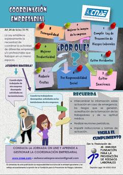 Coordinación empresarial autoescuelas CNAE