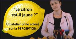 PERCEPTION: un tuto philo par C. Renard