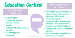 CORTISOL et CERVEAU: les effets