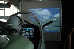 P-3 Flugsimulator