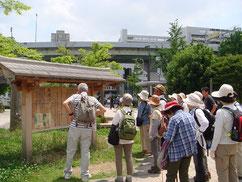難波宮跡公園に竹内街道の 横大路の案内板