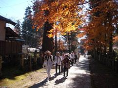 紅葉に飾られた華厳寺参道をしっかりと踏みしめる。松本先達さんありがとう