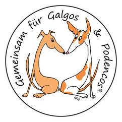 Tierschutz, spanische Jagdhunde, Galgo, Podenco, Windhund, Tierschutz, Hund, Tierschutzhunde, adoptieren