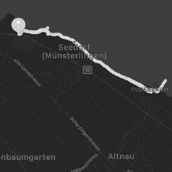 Unser Spaziergang zum laengsten Steg in der gesamten Bodenseeregion direkt entlang des Bodensee Ufers. Der Steg liegt im ostschweizer Ort Altnau.