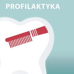 Professionelle Zahnreinigung Die Zahnkünstler Hannover