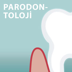 Parodontologie Die Zahnkünstler Hannover