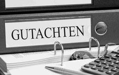 Privatgutachten Jürgen Fischer