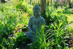 Yoga ist eine Erfahrung, die jeder machen kann - unabhängig von Alter und körperlicher Verfassung