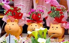 練馬桜台ガーデニングショップ かのはの テラコッタぶさかわアニマルプランターで癒しをプレゼント