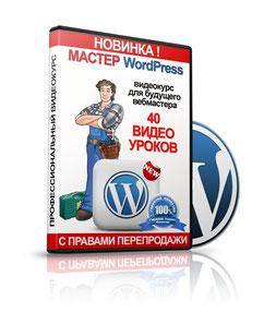 Качественный видео курс для будущих вебмастеров состоящий из 40 видео уроков в HD качестве, с флэш-меню, с 17 бонусами.