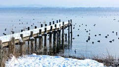 Chiemsee hiver