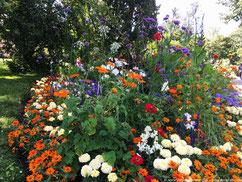 Fleurs Ostpark