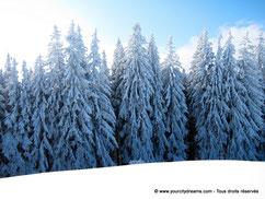 Les paysages d'hiver en Bavière