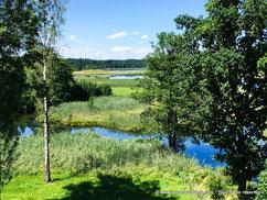 Les marais en Bavière sont splendides