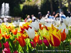 Visiter la Bavière - jardin à Augsbourg