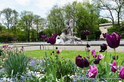 ancien jardin botanique