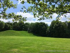 Le park du Hirschgarten prés de Nymphenburg