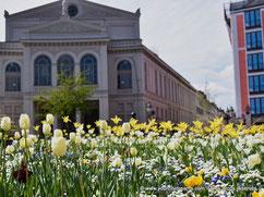 Voyage en Bavière - Munich au printemps