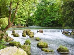 Une rivière traversant le parc