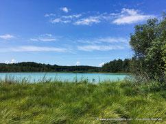 Des étangs bavarois au cadre naturel