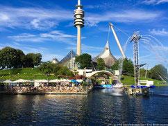 festival parc olympique