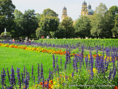 Hofgarten est le jardin de la résidence des rois de Bavière et dispose de fontaines et de parterres de fleurs magnifiques.