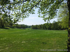 pelouses Westpark