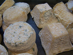 fromages de chèvre affinés 15jours