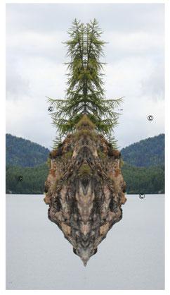 kraftbild natur im engadin, beseelte natur