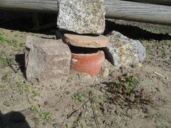 Eingegrabene Blumentöpfe, die mit Polsterwolle gefüllt werden, dienen als Hummelnisthilfen.