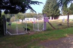Installations ACTIV'DOG