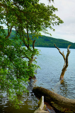 56653 laacher see by immoconsilium