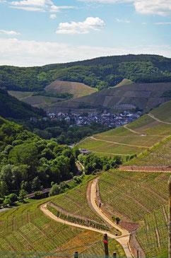 picture bad neuenahr Wanderweg Dernau