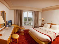 Chambre Golden Tulip Mechtel