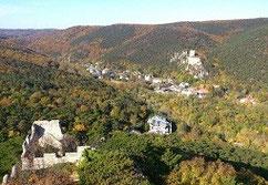 Winer Wald im Herbst: ein Traum aus Farben!