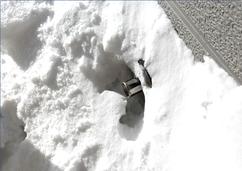 札幌市格安除雪はリンクサービス