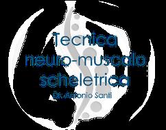 OSTEOPATA PISA - Osteopatia Santi Antonio - Olympia centro di fisioterapia e osteopatia in provincia di Pisa. - osteopatia tecnica neuro muscolo scheletrica