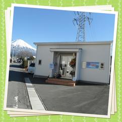 静岡県富士宮市のインコとオウムだけのペットショップです♪