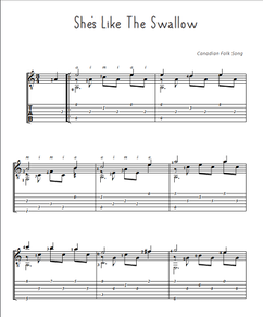 folksong-gitarre