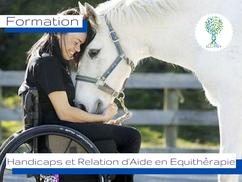 www.ellipsy.fr, formation thérapie brève avec le cheval, formation équithérapie, horse coaching, SFE, FENTAC, équicie, équithérapeuteformation Médiation Equine, équithérapie, module cheval et spectacle, initiation art équestre