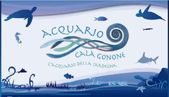 Sardegna Cala Gonone