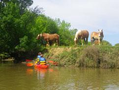 Rencontre en terre et rivière
