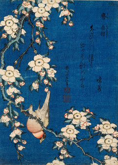 """Katsushika Hokusai Cardellino e ciliegio piangente, dalla serie """"Piccoli fiori"""" (1832 circa)  Silografia policroma, 25,1 x 18,2 cm - Honolulu Museum of Art"""