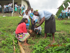 Students plant trees in cooperation with teacher.
