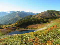 照葉の池の上に雪倉岳、その右白馬岳、旭岳、手前右が朝日岳