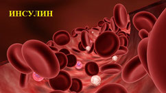 инсулин, кровь, триптофан