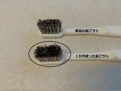 1か月使った歯ブラシの劣化は少なく  耐久性が高そう